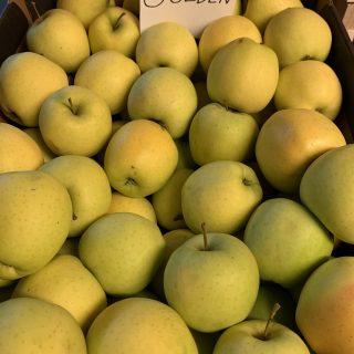 Jabłka Golden Delicjusz