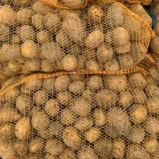 ziemniaki żółte worek