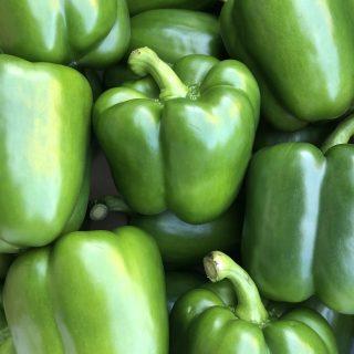 Papryka zielona
